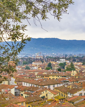 Aerial view of historic center of lucca city from torre guinigi viewpoint Sajtókép