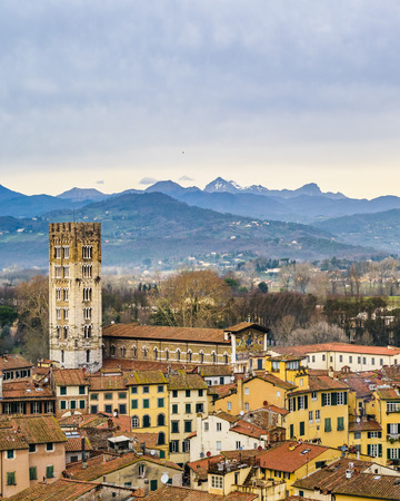 Aerial view of historic center of lucca city from torre guinigi viewpoint 新聞圖片