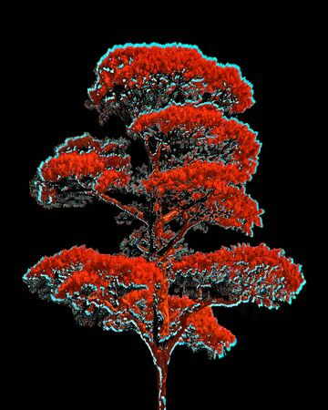 Digital photo manipulation technique tree artwork illustration in red, cyan and black colors Stock Photo