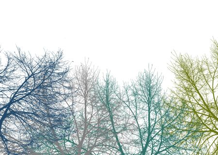 Multicolored graphic silhouette tree branches collage motif over white background