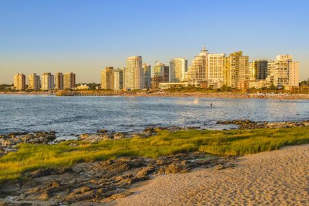 Summer cityscape scene at mansa beach in punta del este city, Uruguay