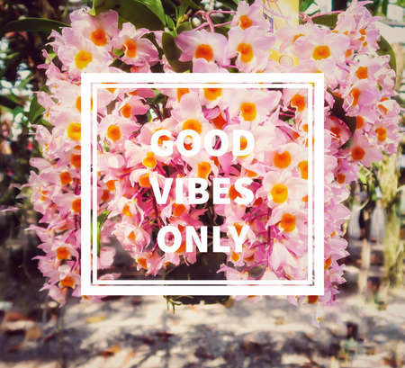 Quote- good vibes only