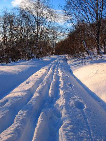 crosscountry: Ski track