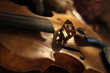 violins: Old Violin Close Up