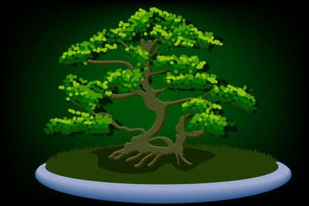 asian gardening: bonsai vector