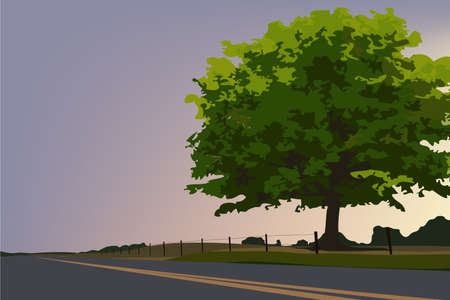 nature vector: bigtree and road lanscape vector