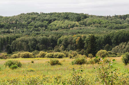 A majestic view from the Shell River Valley hiking trail in Duck Mountian Provincial Park, Manitoba, Canada - Canadian Landscape Foto de archivo