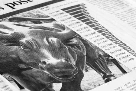 bull market: Bull market concept
