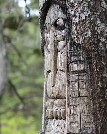 haida indian: Tree carved by native Tlingit indians along a trail on top of Mt. Roberts in Juneau Alaska USA. Stock Photo