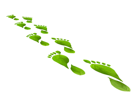 foot steps: Green leaves foot steps isolated over white background. Environmental concept. Think Green. Ecology Concept and susteinable energy.