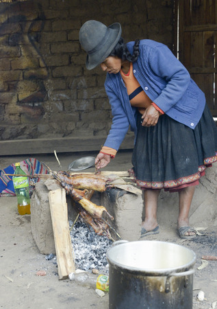cavie: Native Peruvian woman preparing guinea pigs over fire. Guinea pigs are special dish in Peru, prepared for weddings and religious ceremonies.  October 22, 2012
