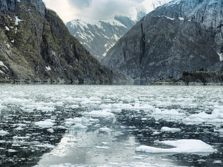 steep: Scenic coastal landscape with steep glacially polished cliffs and floating ice at Tracy Arm Fjord, Alaska