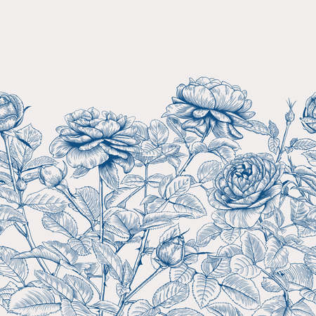 Vintage seamless border with roses. Botanical vector illustration. Classic blue and white background.