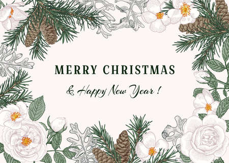 Christmas card with fir branches, cones, white roses and a dusty miller. Botanical illustration.