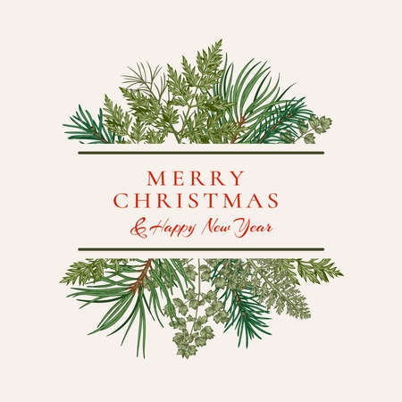 Ð¡hristmas card with bouquet with fir and pine branches, fern and leaves. Botanical illustration. Vector holiday card. Greenery.