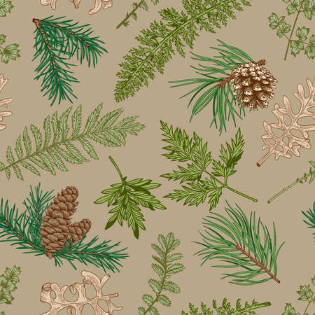 Botanical seamless pattern with fir and pine branches, cones, fern and leaves. New year print. Beige background and colorful pattern.