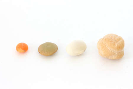 red gram: Single chickpea (indian pea) and lentil on white background close up view Stock Photo