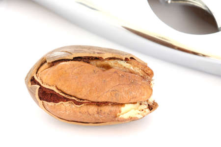 pekan: Detail view of single pecan nut and nut-cracker on white background