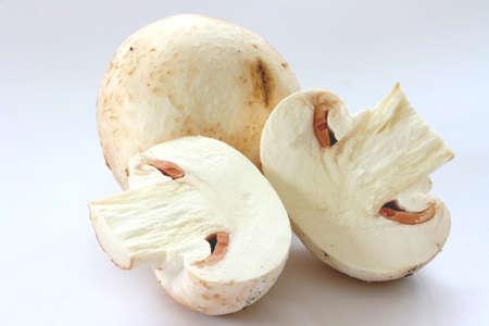 noone: Cut raw mushrooms agarics on grey background