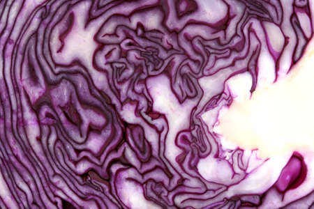 Inside raw red cabbage texture and patter close up Stock Photo - 12811072