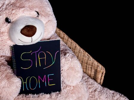 close up fluffy teddy bear with his rainbow's colours 'Stay home' message.