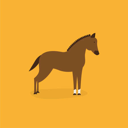 Horse vector illustration Çizim