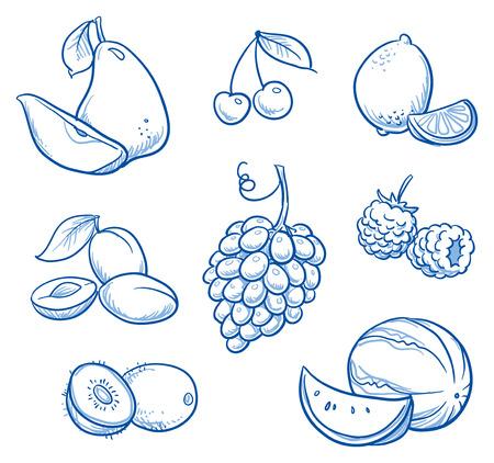 pera: Conjunto de diferentes frutas