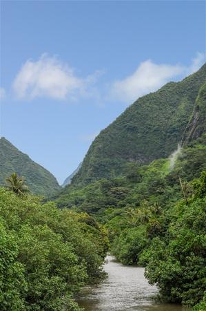 lussureggiante: Un grande fiume nell'isola lussureggiante di Tahiti nella Polinesia francese