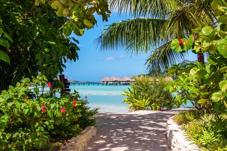 borabora: Image of the island of Borabora with exuberant vegetation and turquoise waters