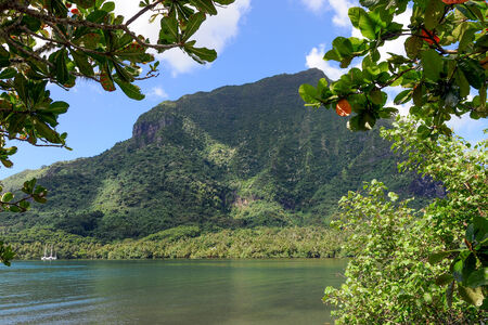 exuberant: An interior bay in the exuberant island of Moorea in the French Polynesia Stock Photo