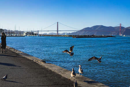 A view of the famous Golden Gate Bridge in San Francisco, CA, USA
