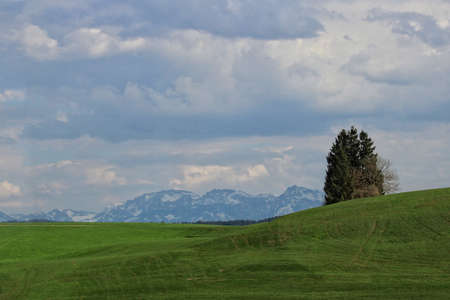 Rolling green hills with the Bavarian Alps behind.