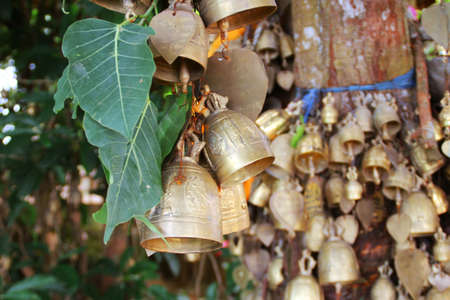 Collection of Budist bells hanging from a tree