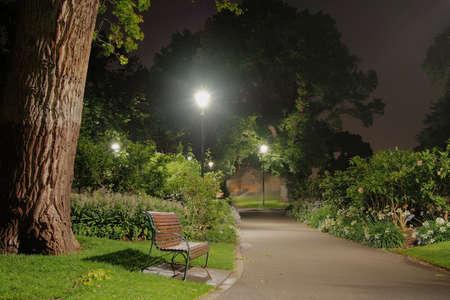 밤에는 공원에서 나무 벤치