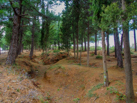 trenches: Remains of the 1915 ANZAC trenches at Gallipoli from World War 1 100 years old.