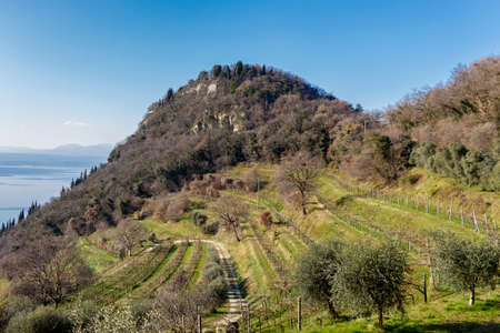 East part of the Rocca di Garda with the vineyards on the adjacent valley.