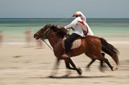 Horses exhibition at Djerba white beach with panning technique with blue sea on background