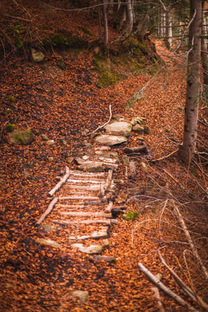The beautiful pathway to arrive to the Morricana Falls arounded by an autumn theme in Abruzzo, Italy
