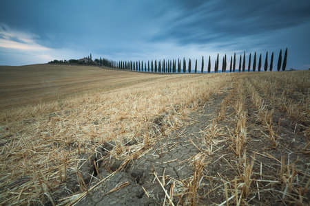 Countryside landscape in Val d'Orcia, Tuscany, Italy Stockfoto - 120432466