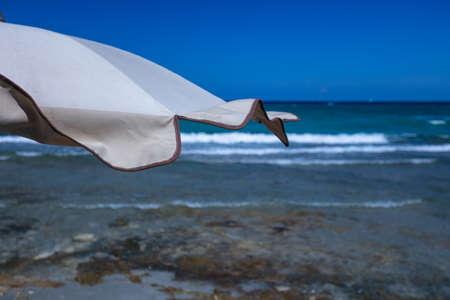 Beach umbrellas and deckchairs near the sea