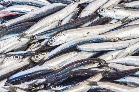 fresh fish background Stock fotó