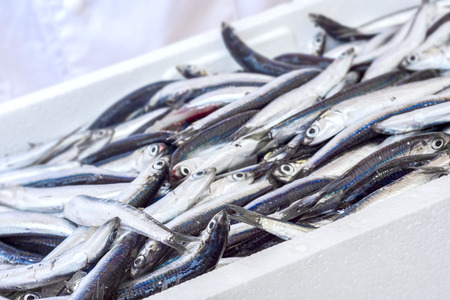 fresh fish on plate Stock fotó