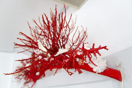 red decorative coral Stock fotó