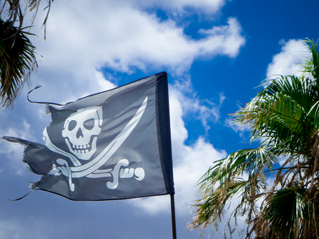 the jolly roger on a cloudy sky  and palms background Stock Photo