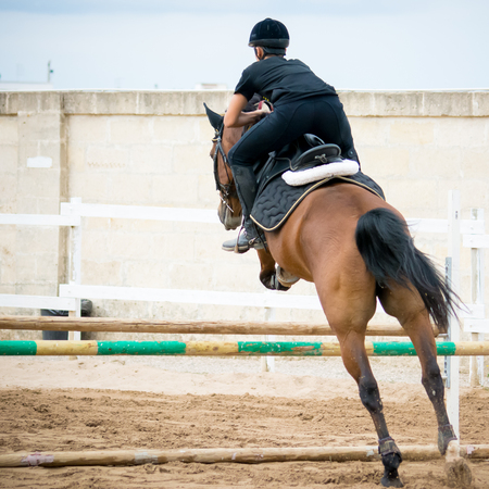 uomo a cavallo: horse jumping obstacles during equestrian school training on blur background Archivio Fotografico