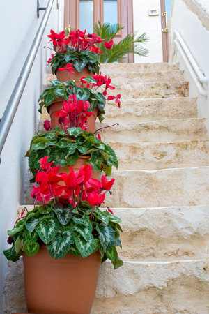 Vertical View of Close Up of Stone Stairs Decorated With Flowered Terracotta Pots. Locorotondo, South of Italy