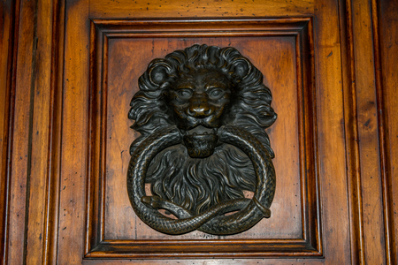 Horizontal Wiev of an old Steel Clapper on a Wooden Door With a Lion and a Snake.