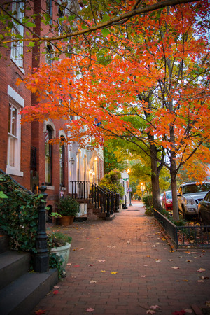 Pictoresque Street with a Red Leaves Tree in Autumn in Georgetown. Washington, Virginia