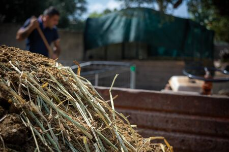 Close Up of Horse Manure on Blur Farm Environment Background in Italy Stock Photo
