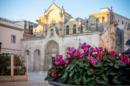 Close up of Purple Fowers in front of the Church of San Giovanni Battista in Matera on Blue Sky Background